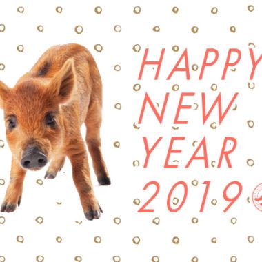 龍弥デザインから新年のご挨拶 2019